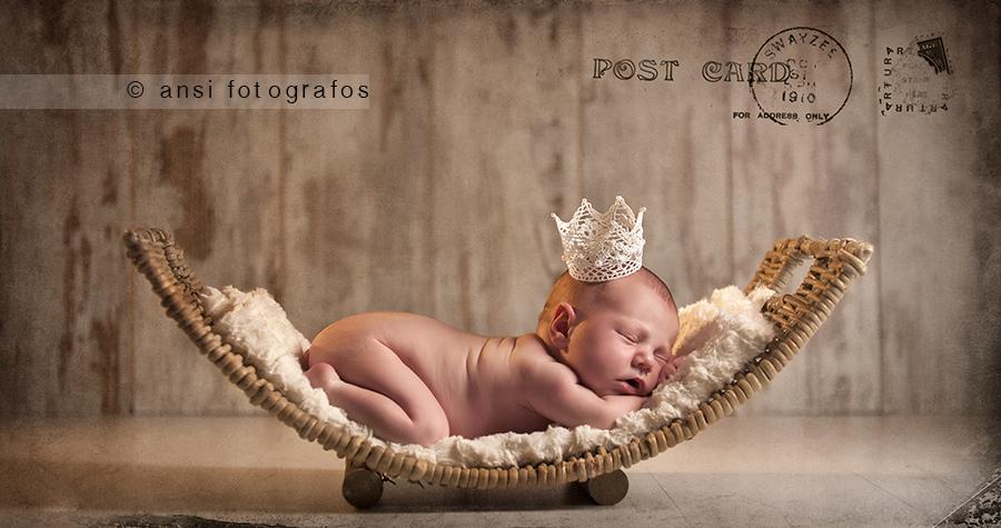 ANSI FOTOGRAFOS_VIOLETA0005