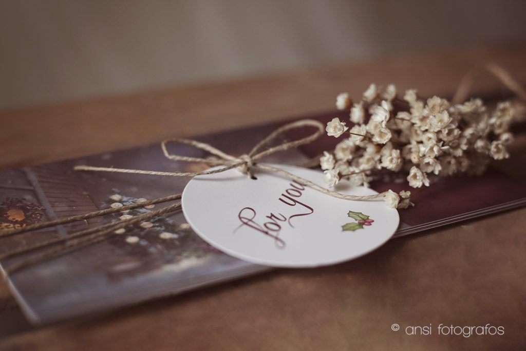 ansi-fotografos_nice-things_navidad002